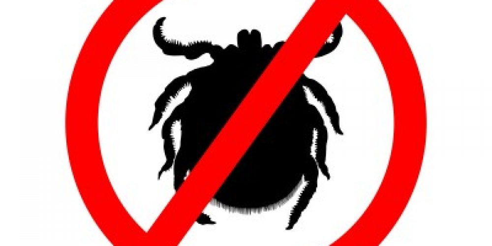 Lyme Disease: Something to keep in mind as the weather gets warmer…