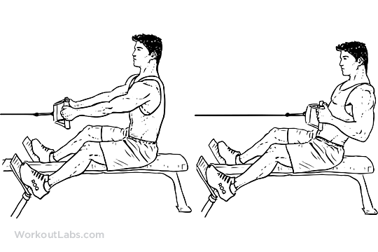 seated_low_cable_row_m_workoutlabs